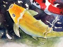 Painting a golden Koi by Carol May
