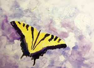 Paint the large black areas on the rest of the butterfly wings.