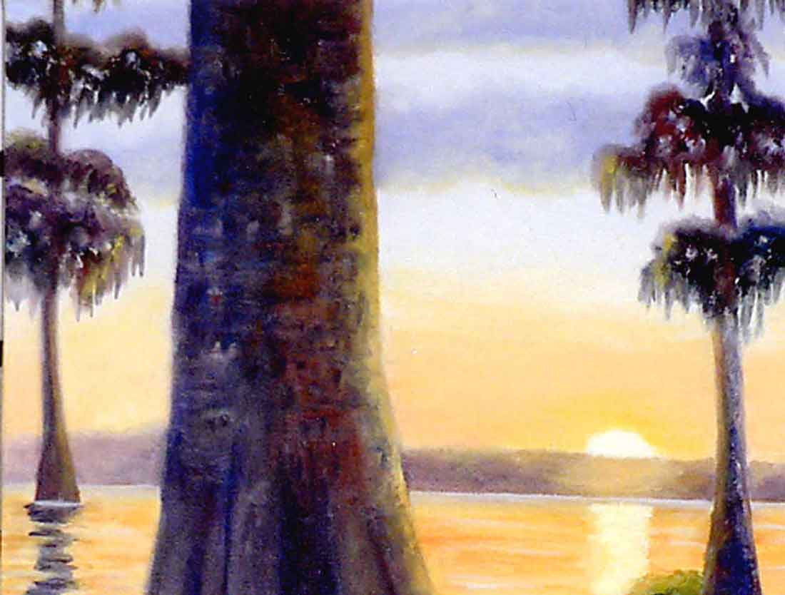 Cypress Sunset a Florida oil painting by Carol May