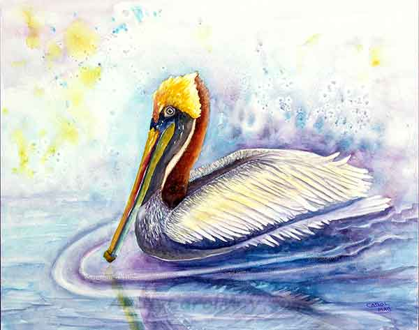 Paddlin' Pelican an original watercolor painting on Aquabord for sale by the artist Carol May