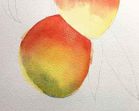 Continue glazing watercolor on the mangoes