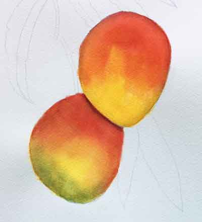 Finish glazing the mangoes