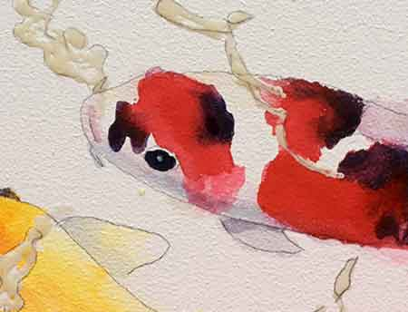 Paint around the white spots on the Koi