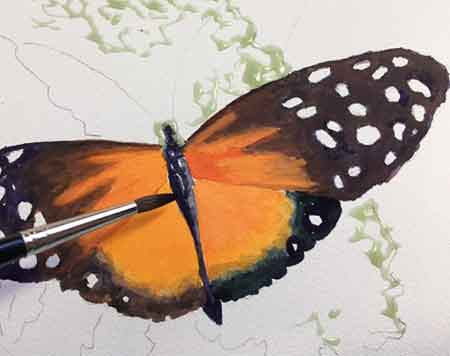 Painting a longwing butterfly by Carol May