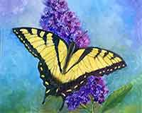 Butterfly Paintings by artist Carol May