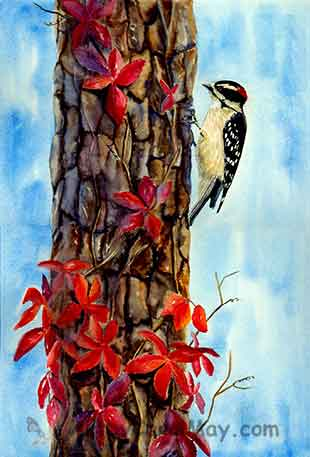 A Downy Woodpecker on a pine tree with Virginia Creeper, a beautiful nature watercolor painting by Carol May
