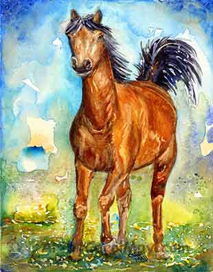 Lively, colorful watercolor horse painting by Carol May