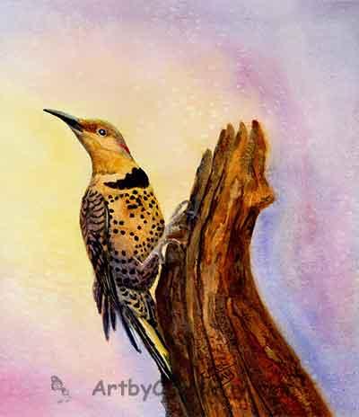 Watercolor nature, bird painting by artist Carol May