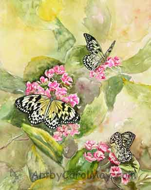 Large Tree Nymphs on False Hydrangeas, watercolor painting by Carol May