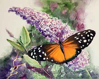Watercolor painting of a Longwing Butterfly on a Butterfly Bush by Carol May