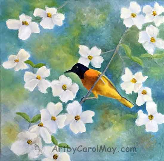 Learn oil painting for beginners. Paint an Oriole and Dogwood flowers with the painting artist Carol May