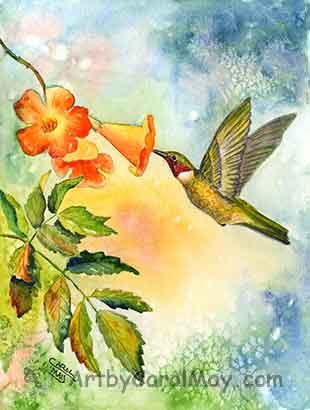 Ruby-throated Hummingbird by Carol May