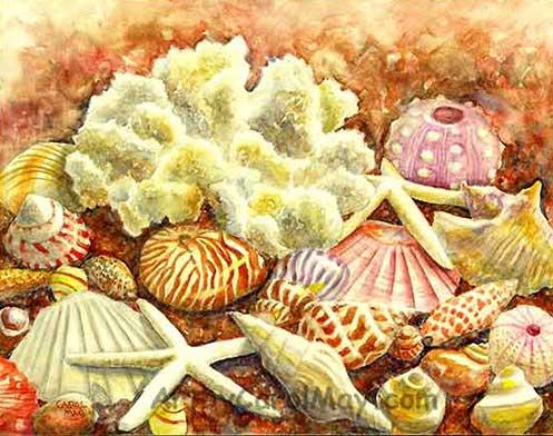 watercolor painting of sea shells by artist Carol May
