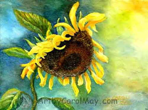 An oil painting of a giant sunflower by artist Carol May