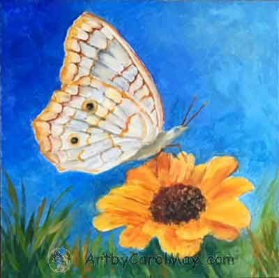 White Peacock butterfly on a Zinnia flower by Carol May