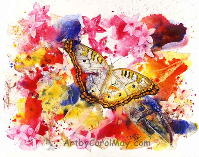 White Peacock Butterfly - one of the awesome paintings by artist Carol May