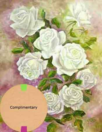 Using Complimentary Colors for a flower painting of white roses by artist Carol May