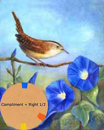 Compliment plus a half right used for a wren with morning glory flowers