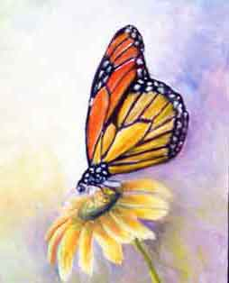 painting of a Monarch Butterfly on a yellow daisy flower by Carol May