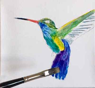 Lay in the underpainting colors of the hummingbird