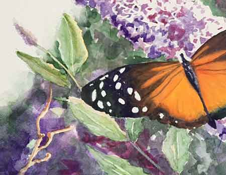 Add the final touches to your beautiful butterfly painting.