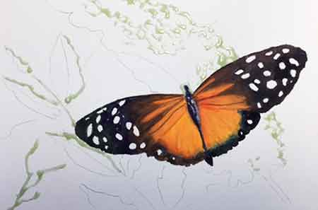 Complete painting the butterfly body and wings.
