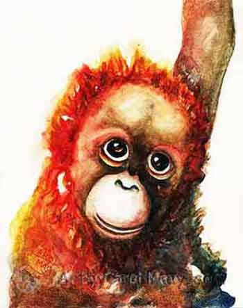 Orangutan Baby watercolor painting by Carol May