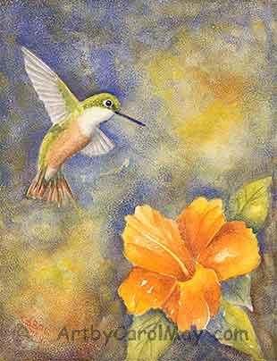 Bahama Woodstar hummer painting by Carol May