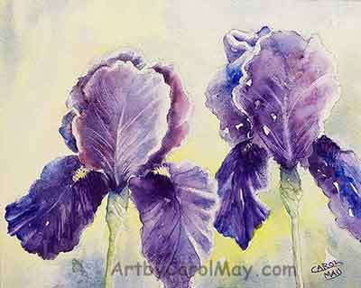 Finish the details of the Bearded Iris watercolor painting