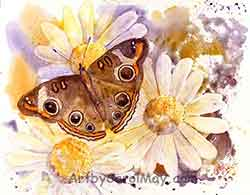 A mixed media painting of white daisies and a Buckeye butterfly by Carol May