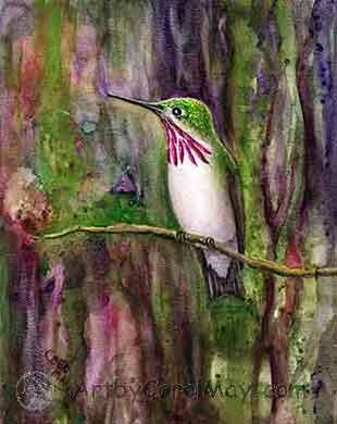 Calliope Hummingbird in the alpine woods by artist Carol May