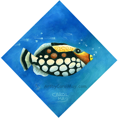 Clown Triggerfish oil painting by Carol May
