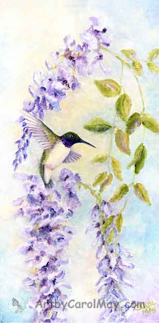 Black-chinned Hummingbird with wisteria flowers by Carol May