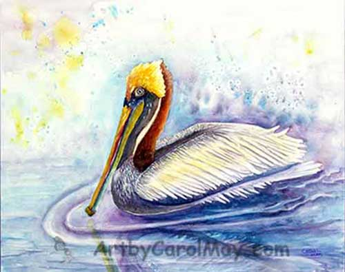 Paddlin' Pelican a watercolor painting for sale in the Art Store of Carol May