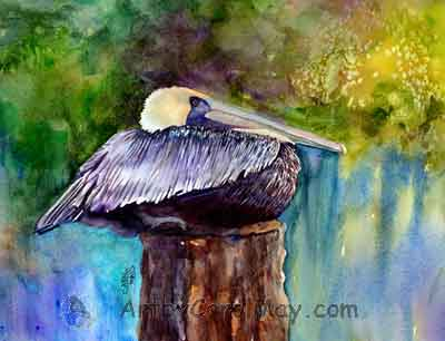 Brown Pelican Resting watercolor painting, art by Carol May