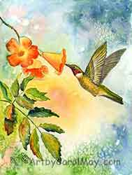 Ruby-throated Hummingbird watercolor painting on paper