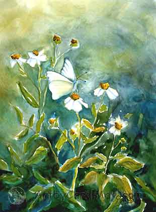 painting of a Great Southern White butterfly artist Carol May